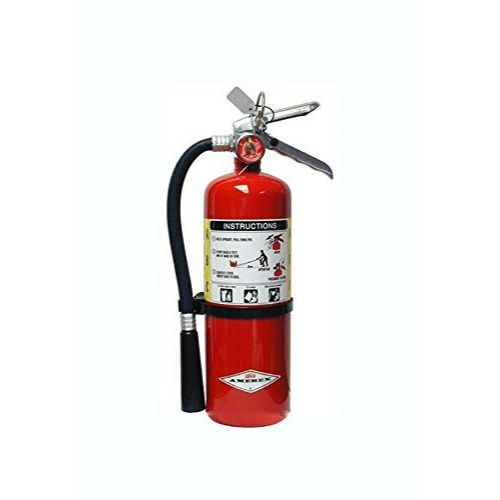 amerex 10 fire extinguisher