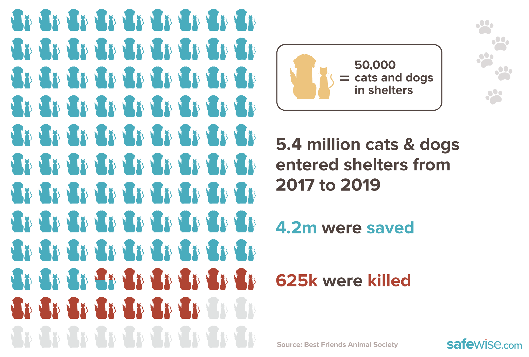 Shelter animal save rate infographic