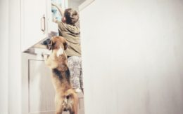 boy and dog opening cabinet