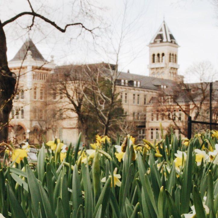 Utah State University Campus
