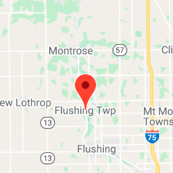 Flushing Township, Michigan