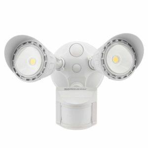 Leonlite-Dual-Light