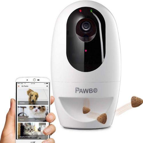 Pawbo pet camera app on phone