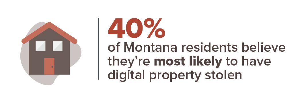 Montana crime concern infographic