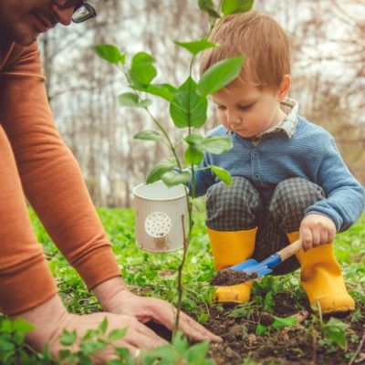 father and little boy planting tree