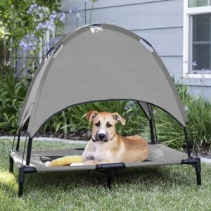 dog resting on pet bed with canopy on the lawn