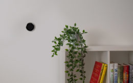 nest thermostat on wall next to bookshelf with plant