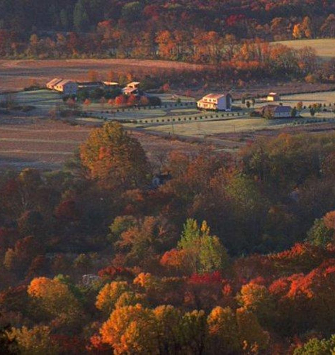 aerial view of Washington Township, NJ in the autumn