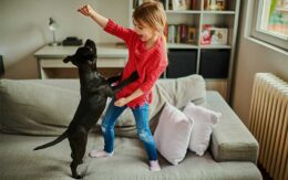girl playing with dog on a couch