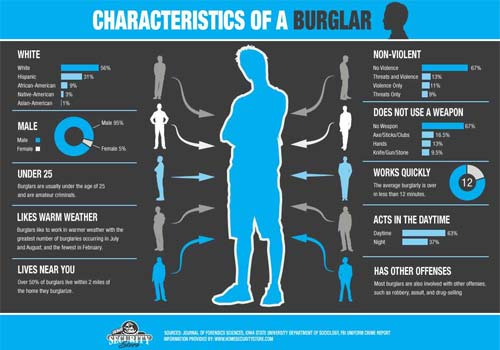 Characteristics of a burglar infographic