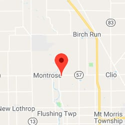 Montrose Township, Michigan
