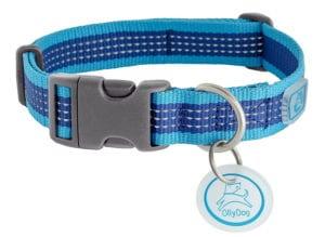 ollydog dog collar