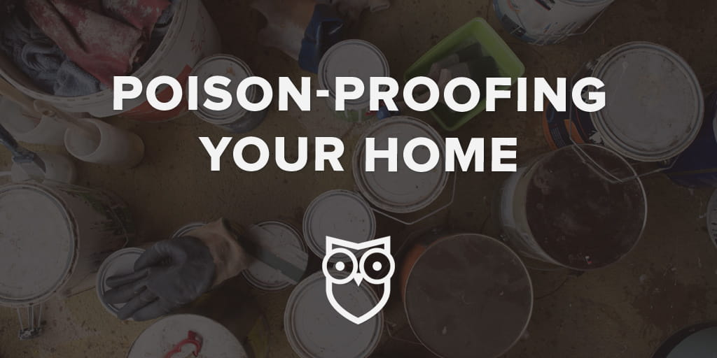 Poison Proofing Home (1)