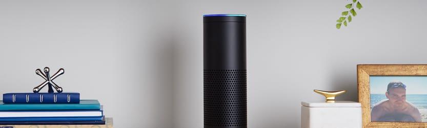 Amazon Echo on shelf