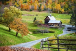 Fall foliage, New England countryside at Woodstock, Vermont, farm in autumn landscape. Old wooden barn surrounded by colorfull trees.