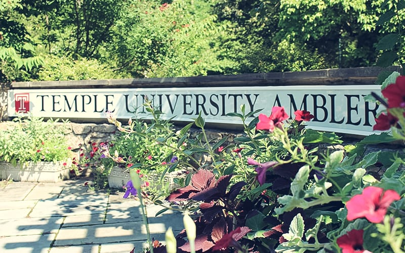 Upper Dublin Temple University