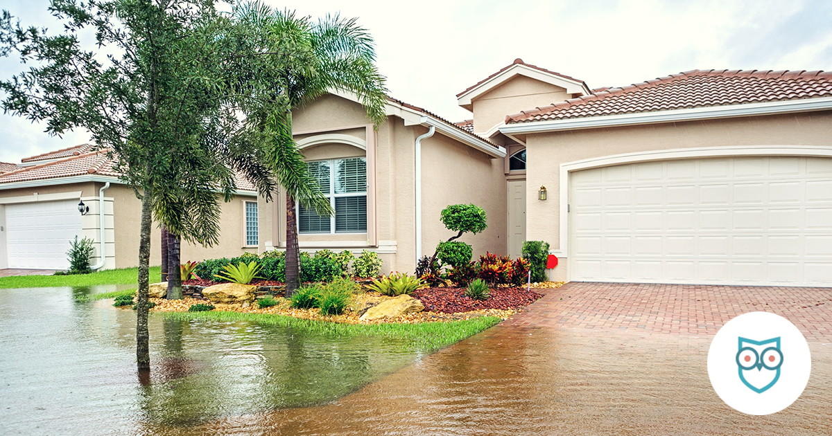 How To Know If You Live In A Flood Zone Safewise