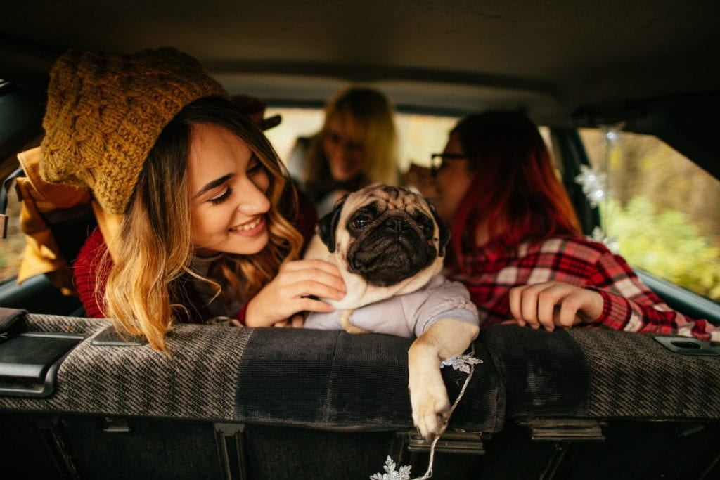 friends and puppy preparing for a long distance road trip