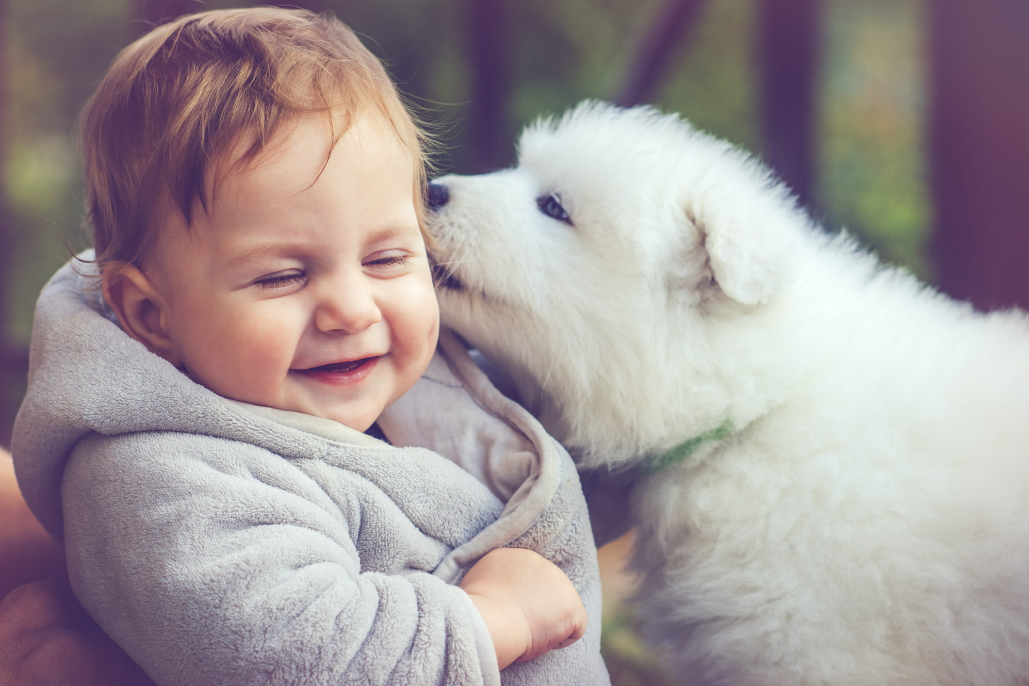 puppy giving baby kisses
