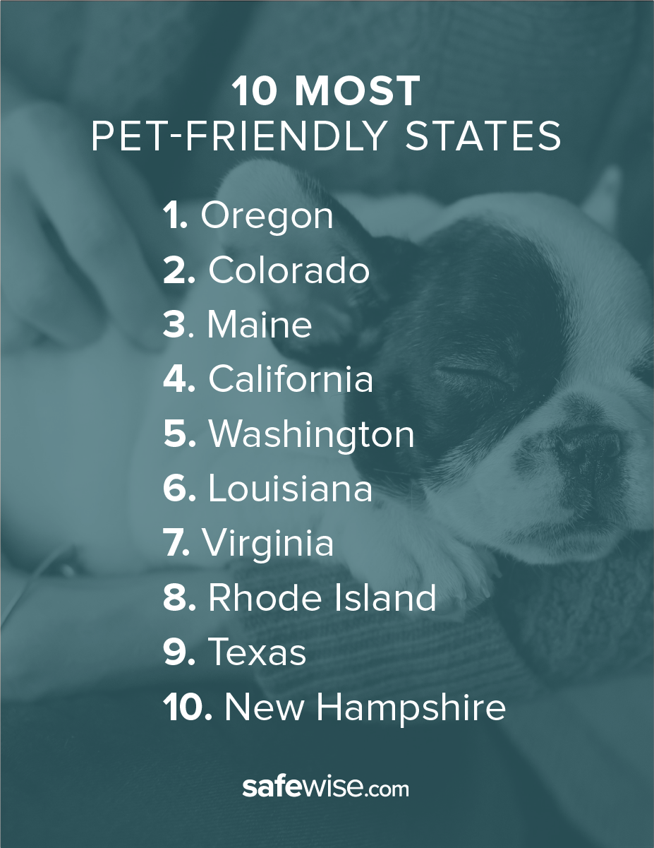 most pet friendly states-breakout 1