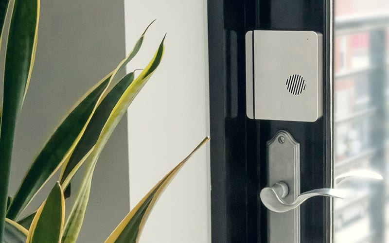 scout door alarm above handle with plant on the left