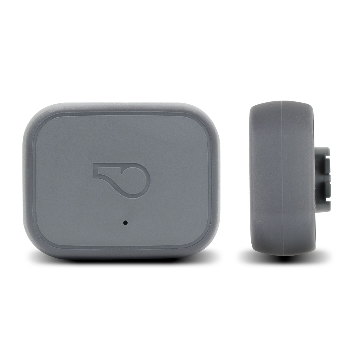 Product image of Whistle 3 GPS pet tracker